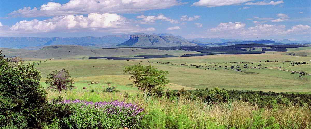Drakensberg accommodation view