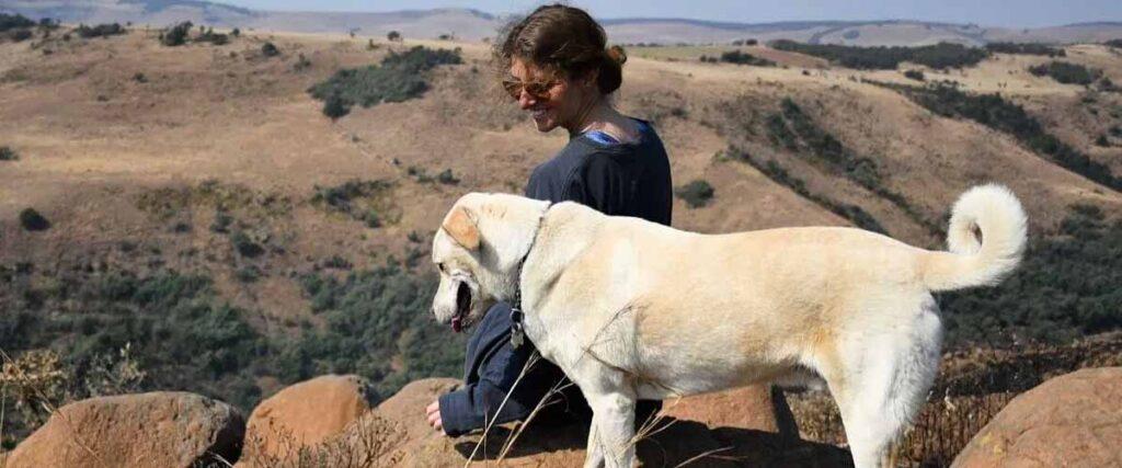 Antbear Lodge Pet friendly hiking trails