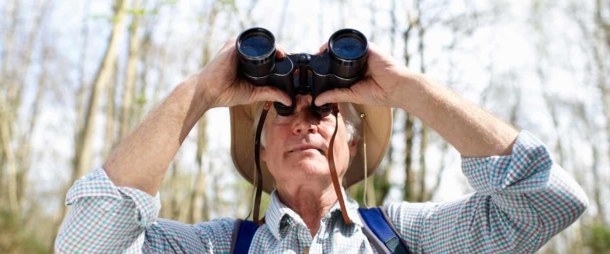 Drakensberg birding and bird watching