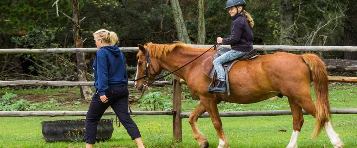 Drakensberg child friendly horse trails