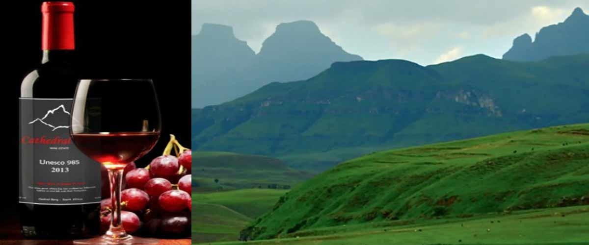 Drakensberg wine tasting