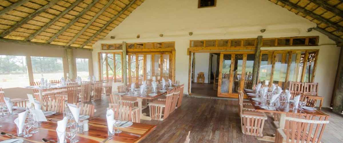 Drakensberg events and functions