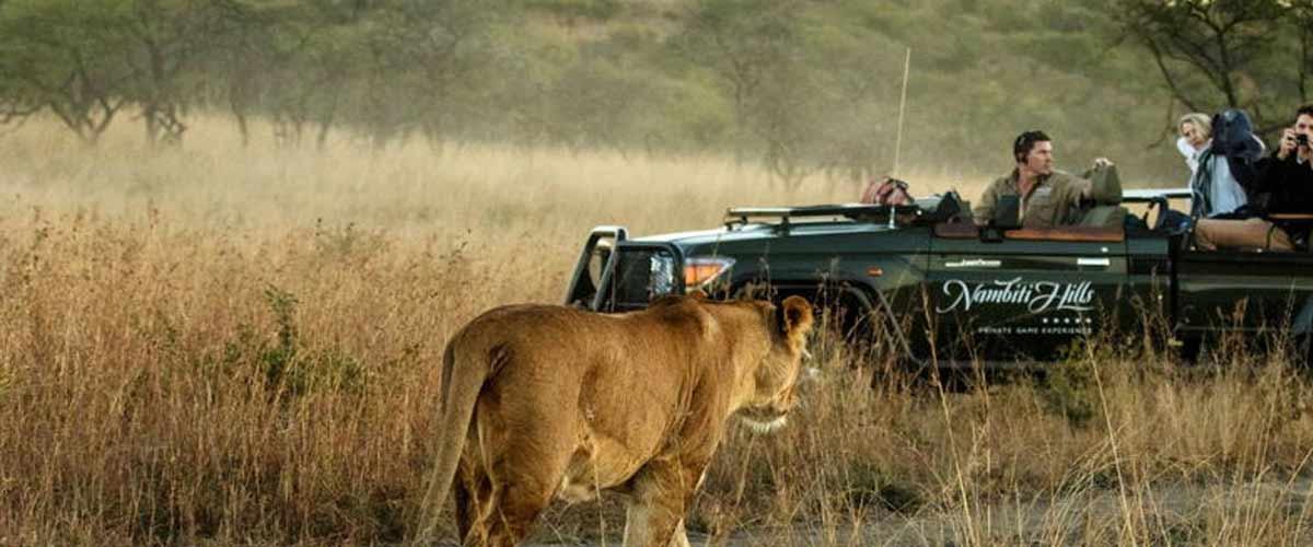 Nambit Game Reserve - Malaria free - Big 5